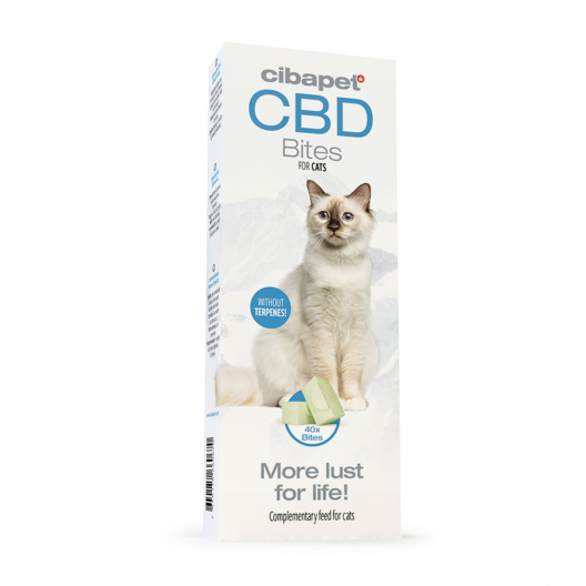 CBD Treats for Cats