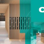 Cibdol otevírá první kamenný obchod v Amsterdamu